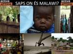Saps on és malawi.jpg